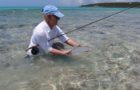 Words out, the bonefish are incredibly hungry on Grand Bahama and Abaco