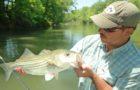 Reminder: Atlanta Fly Fishing Show this weekend