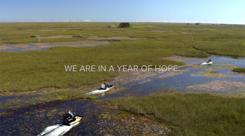 Conservation News: Earth Day 2020 and Hope for the Everglades
