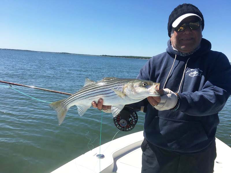 The size will matter in striper water on the Eastern Seaboard