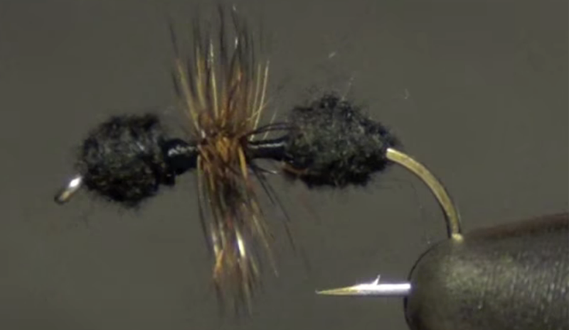 Fly fishing terrestrials: Fishem' dry or fishem' wet, they'll make your day