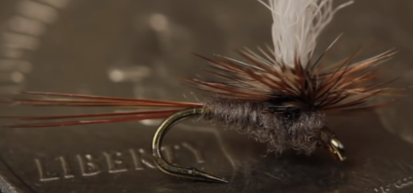 Parachute Adams, flylifemagaziine.com, fly tying, fly fishing
