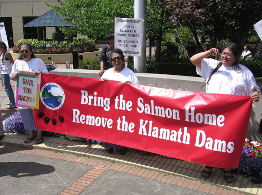 Chinook Salmon: Coming Home to the Klamath