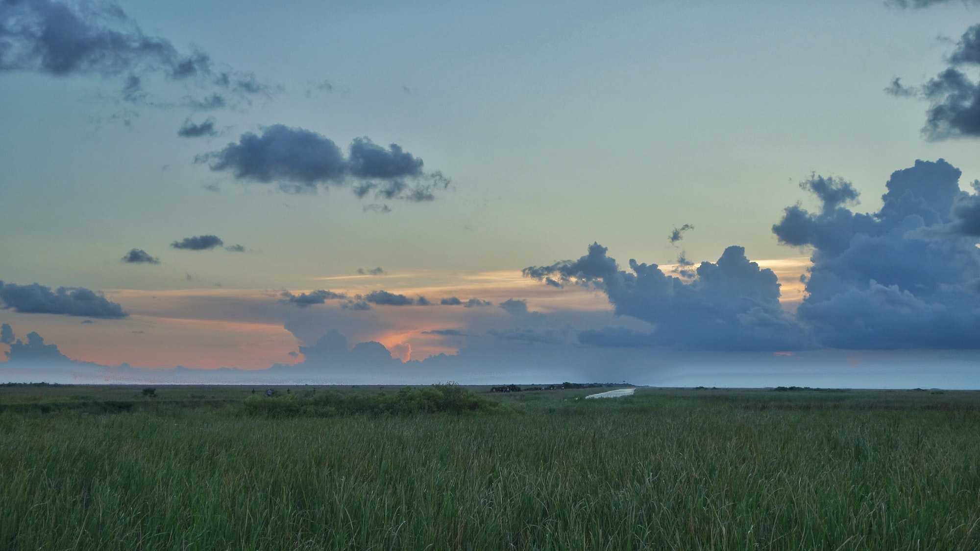 Conservation News: Healing Our National Treasure; The Everglades