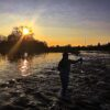 Fly Fishing the American River
