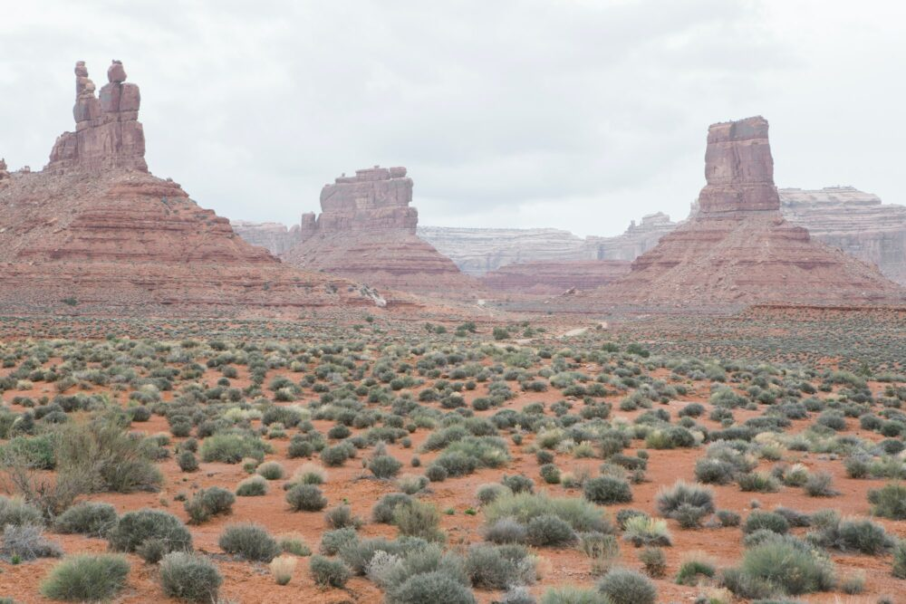 Valley of the Gods in the heart of Bears Ears National Monument