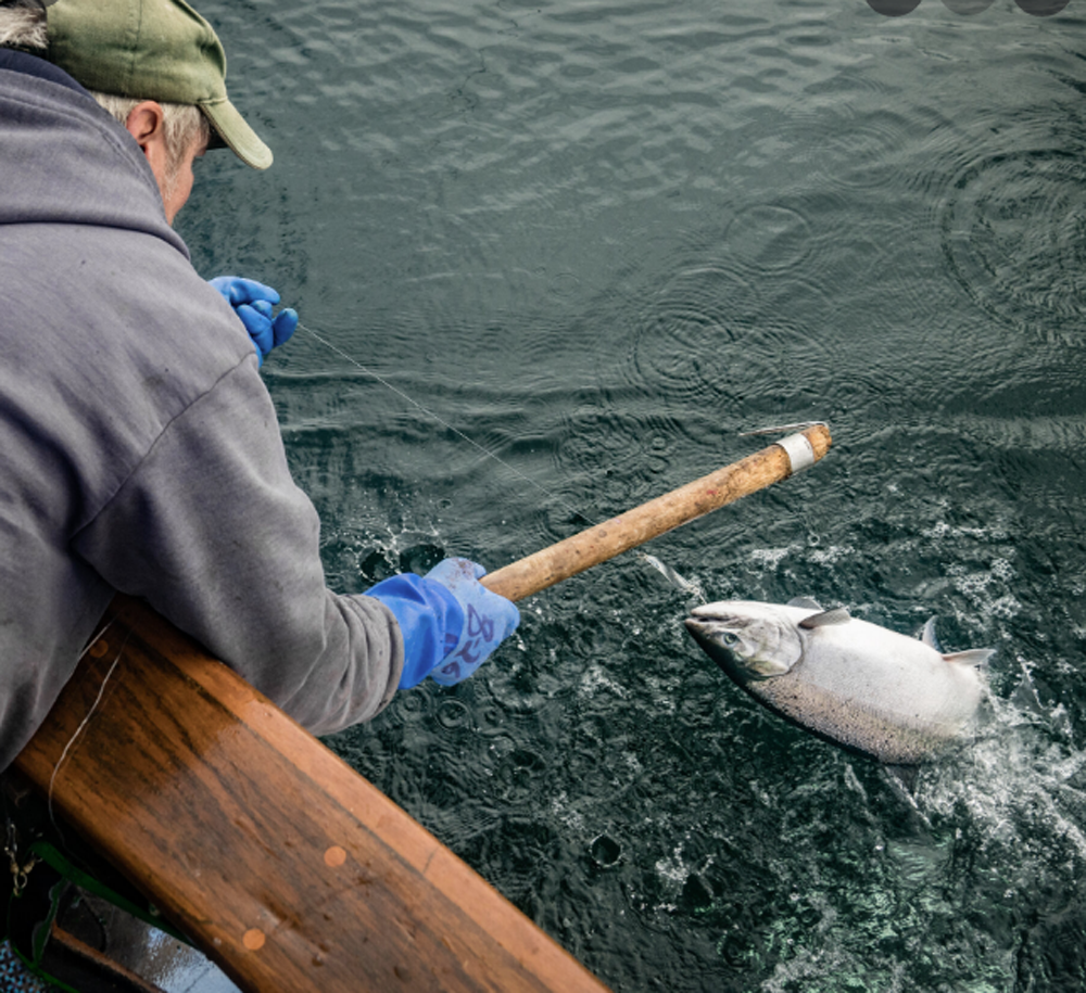 Alaska: Where Salmon Fly Fishing Dreams Come From