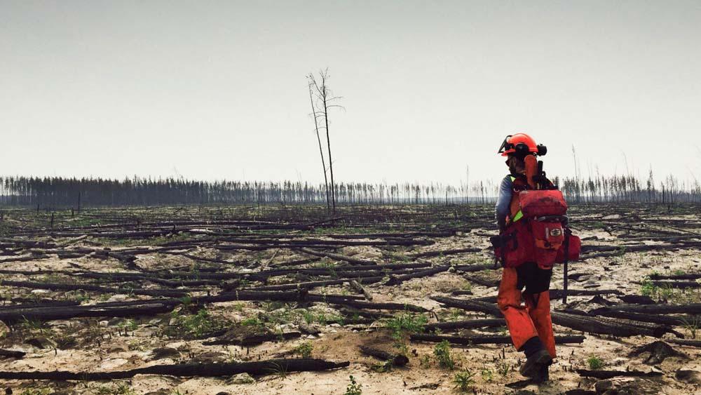 Climate Change: fires, boiled fish, deforestation, mudslides