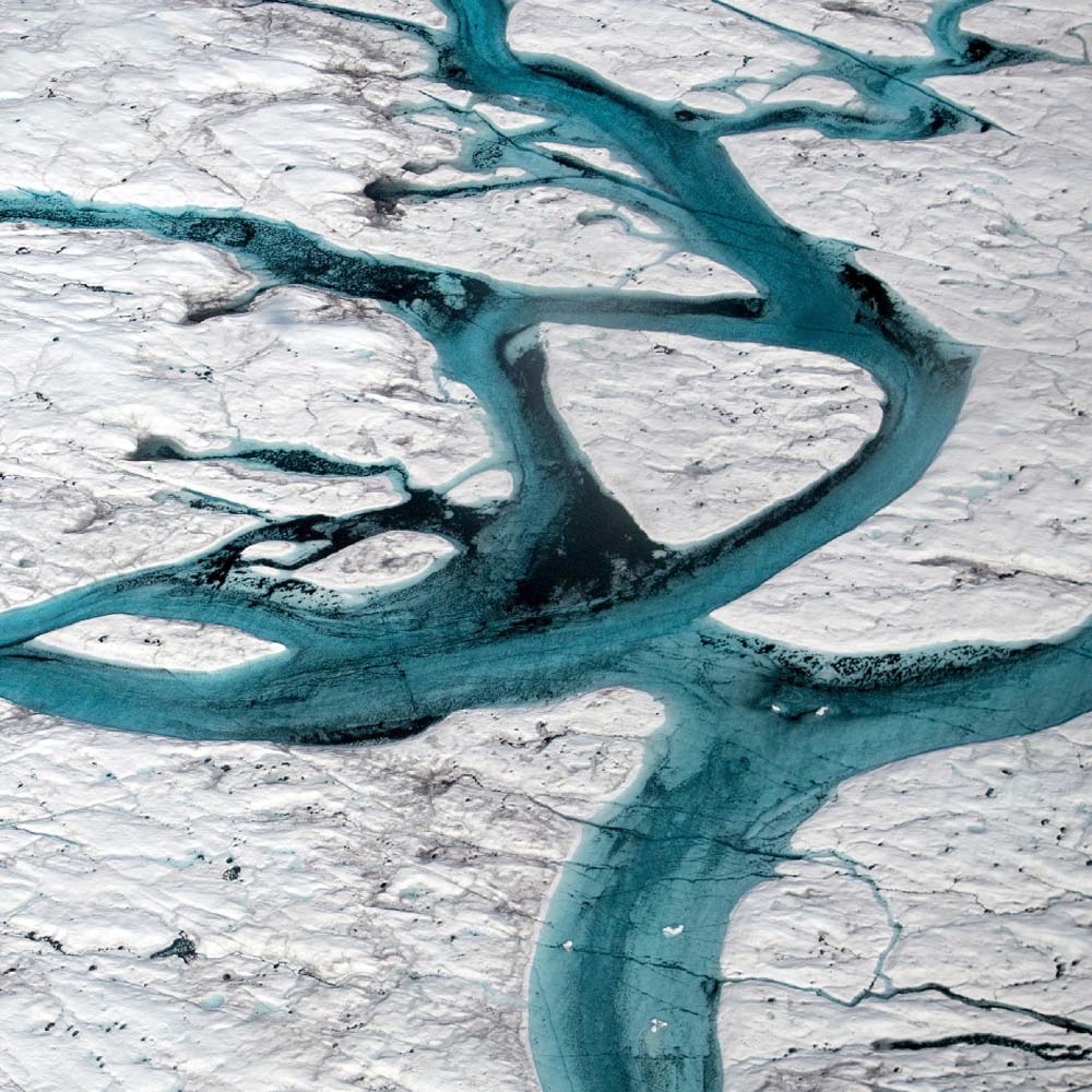 Conservation News: Oceans Are Absorbing Almost All of the Globe's Excess Heat